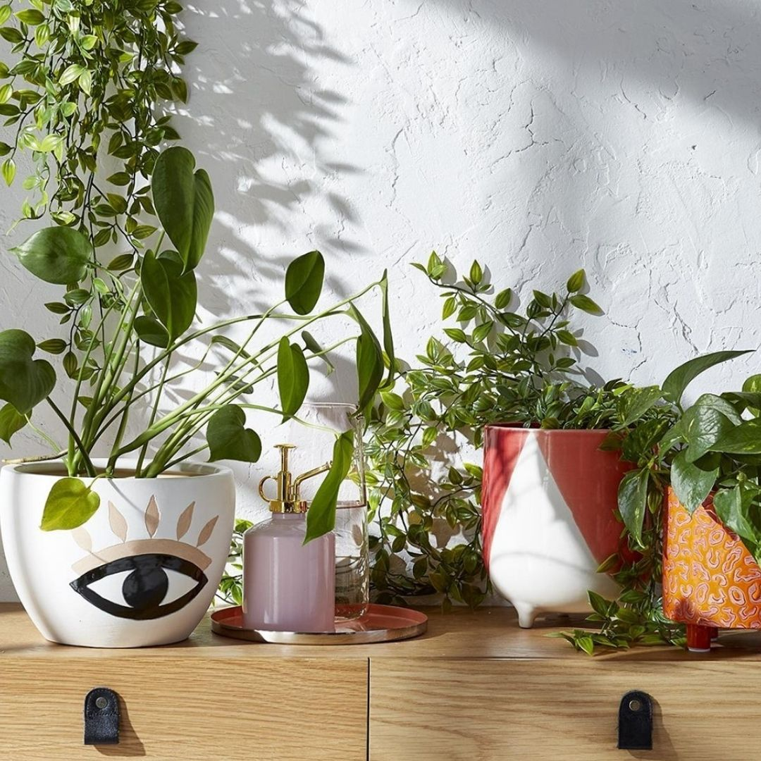 A variety of planters
